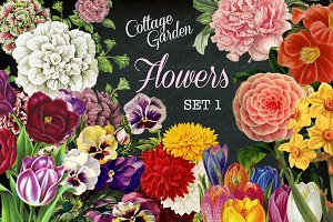 Cottage Garden Flowers Set 1