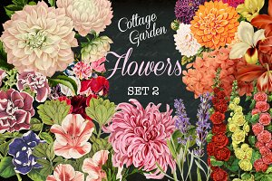 Cottage Garden Flowers Set 2