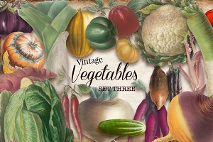 Vintage Vegetables Set 3