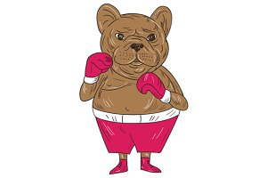 French Bulldog Boxer Boxing Stance