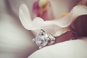 Wedding rings on a flower