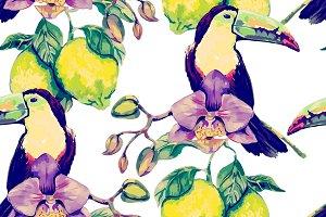 Toucans,orchid,lemons pattern
