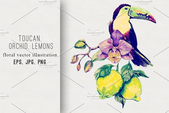 Toucan,orchid,lemons illustration