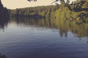 Peacuful Lake in the Forest