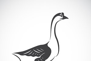 Vector image of a goose. Bird