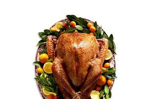 Plated Turkey & 4 Backgrounds