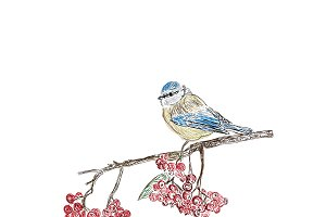 bird on branch, sketch style, vector