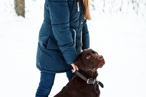 Female Walking with Labrador