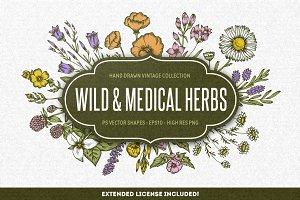 Wild & Medical Herbs