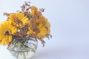 Bowl of yellow daisies