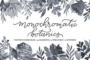 Botanical Vector Watercolor Floral