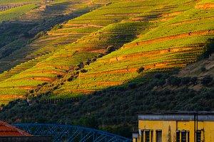 river Douro valley, Portugal