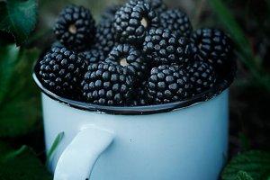 The pickling of blackberries