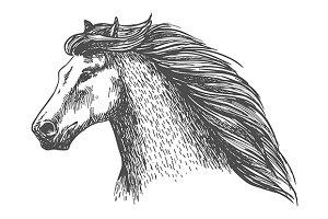 Raging gray horse
