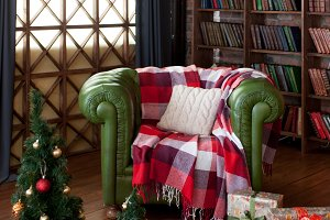 Fir tree in a room with library