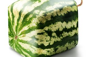 Cubic watermelon on white background.