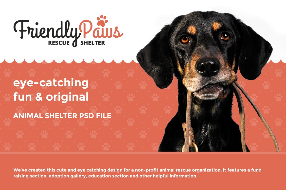 Friendly Paws Shelter Psd Template Website Templates