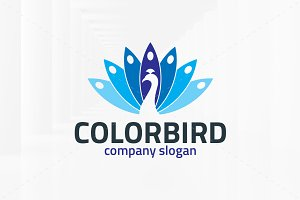 Color Bird Logo Template