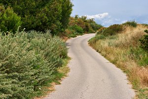 winding road on the hills