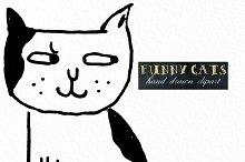 Funny cats. Handwritten clipart