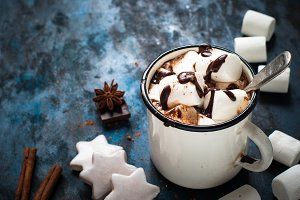 Chocolate with marshmallow in the mug.