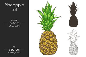 Vector Pineapple, Ananas