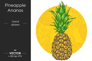 Vector juicy Pineapple, Ananas