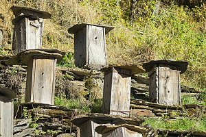 beehives in mountain