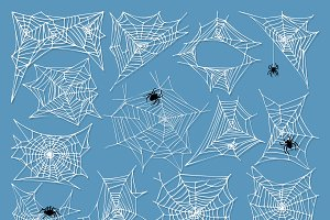 Spiders and spider web silhouette