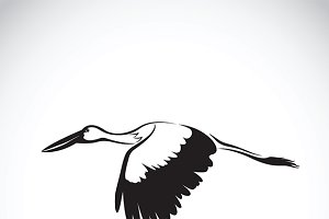 Vector of stork flying.