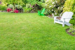 Garden scene with benches