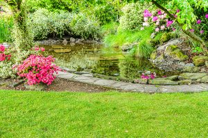 Landscaped garden scene with pond