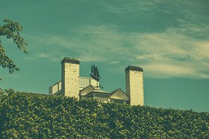 Chimneys Behind the Hedges