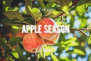 Apple Season Photoset Coll.1