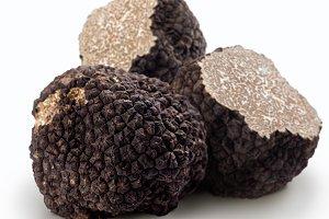 Black truffles on a white background