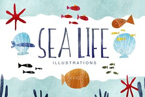 Ciao to my Sea life collection