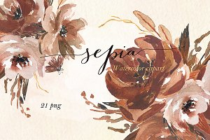 Sepia flowers. Watercolor clipart
