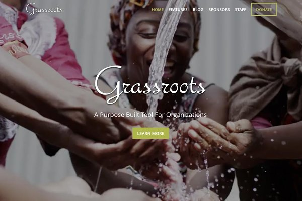 WordPress Non-Profit Themes: Organized Themes - Grassroots Nonprofit WordPress Theme