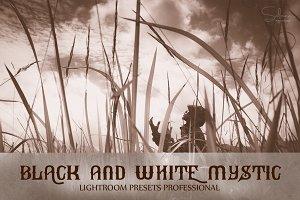 B&W Mystic Lightroom Presets