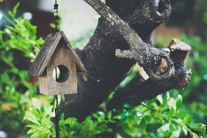 Wooden miniature bird house on green tree - vintage tone