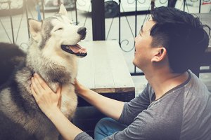 Young Asian male dog owner playing and touching the happy Husky Siberian dog pet with love and care