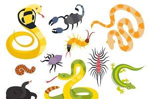 Vector flat snakes