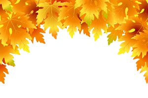 Vector background with fall leaves.