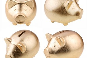 gold pig as a money-box on a white background