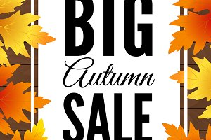 Big autumn sale. Fall sale banner.