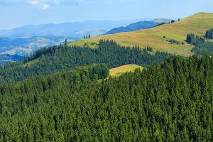 Summer Carpathian mountain,Ukraine.