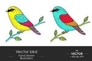 Birds - hand drawn illustration
