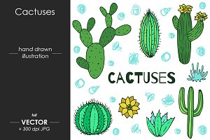 Cactuses - vector illustration
