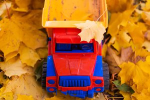 Toy car truck outdoors autumn