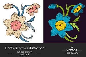 Daffodil victorian style sketch